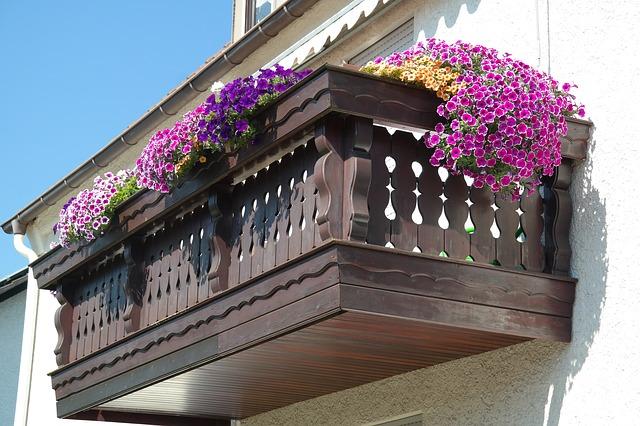 גינה מקורית: עיצוב גינה במרפסת
