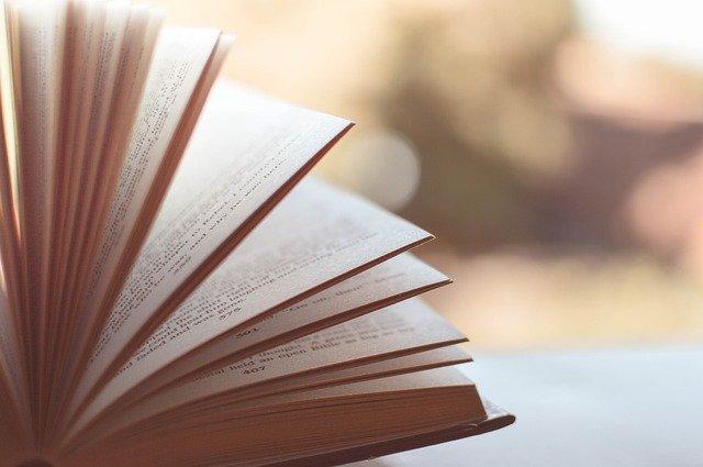 טיפים לחיפוש מאמרים אקדמיים