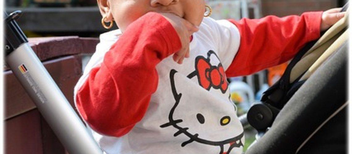 טיולונים לתינוקות